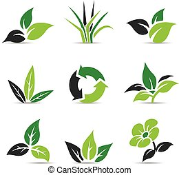 Black and Green Leaves isolated on white - Vector...