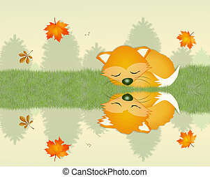 red fox sleeping - illustration of red fox sleeping