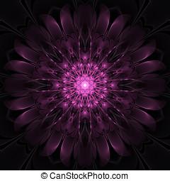 Abstract floral mandala - Dark pink floral mandala fractal,...