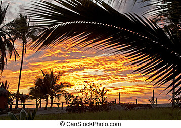 Evening sky on the Pacific Ocean in Nayarit, Mexico