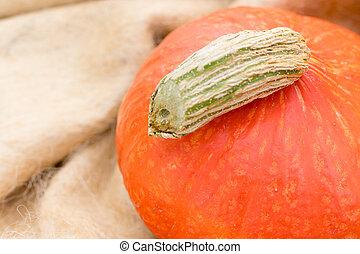 Hokkaido pumpkin - Detail of a Hokkaido pumpkin