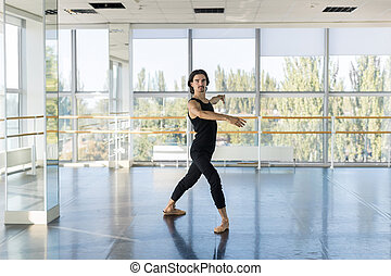 Young Male Ballet Dancer Posing, Man Practicing In Dance...