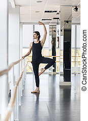 Young Male Ballet Dancer Posing Near Barre, Man Practicing...