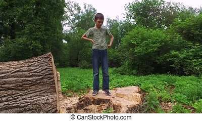 boy walking on a wooden stump. Large stump of an old tree felled.