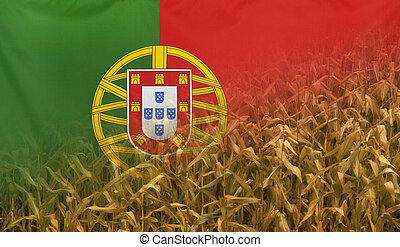 Portugal Nutrition Concept Corn field with fabric Flag -...