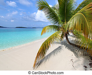 Beautiful Solomon Bay (USVI) - A sunny day at Solomon Bay in...