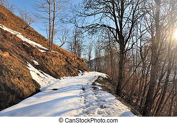 mountain path in winter - mountain path crossing forest...