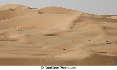 timelapse desert dunes - timelapse of desert dunes with...