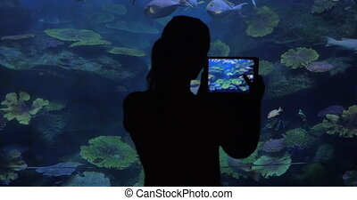 Woman with touch pad taking photos in oceanarium -...
