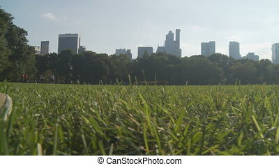 pan shot meadow in central park