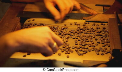 manual coffee bean selection close - male fingers selecting...