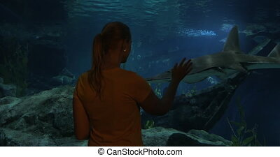 Learning sea life in oceanarium - Woman standing by huge...