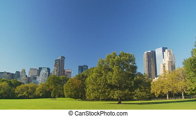 sunny day in central park