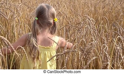 cute girl in wheat field slow motion