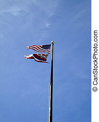 USA and HAWAII state Flag