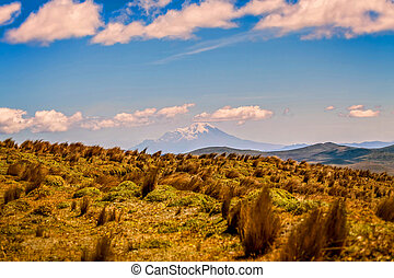 National Park Cotopaxi Landscape, Ecuador, South America