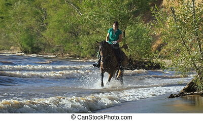 Pretty girl riding horse in the river. Sunny summer day....