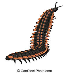 arthropleura, invertebrato