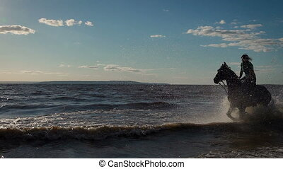Beautiful young women horse riding at a beach. Galloping...