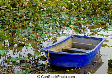 Pink lotus with boat
