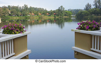View of pond from Balcony