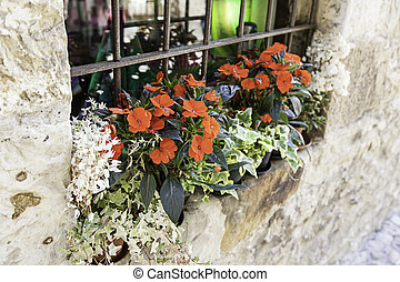 Pots with red flowers, detail of a few plants in a window