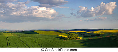 Green meadows under blue sky - Green meadows under blue...