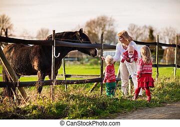 Pferd, Fütterung, familie, Kinder