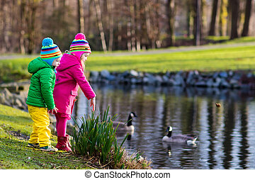 Kids feeding ducks in autumn park - Little girl and boy...