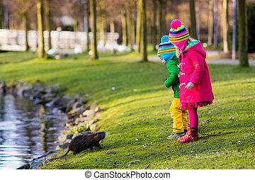 Kids feeding otter in autumn park - Little girl and boy...