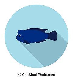 Stearocranus fish icon flat Singe aquarium fish icon from...