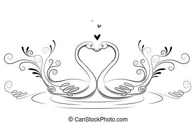 miłość, łabędzie