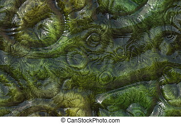 Alien Skin - Seamless Alien Skin Texture of Reptile Monster