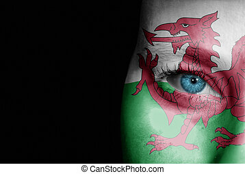Supporter of Wales