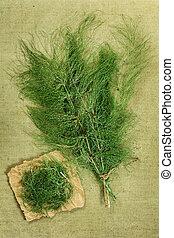 Equisetum, horsetail,Dried herbs Herbal medicine,...