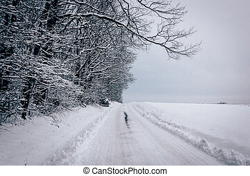 Snow covered road in rural Baltimore County, Maryland.