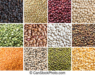 Collage of legumes - Collage of 12 different legumes -...