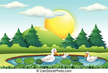Three ducks in the pond illustration