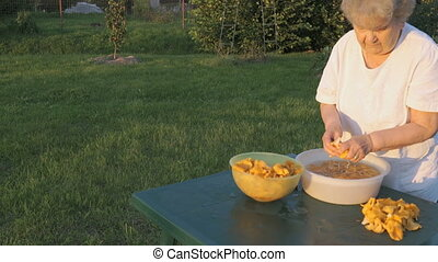 Elderly woman 90s cleans chanterelle mushrooms in bowl...