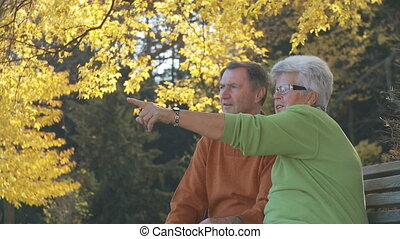 senior couple watching closely