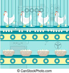 Chicken egg factory - Chickens laying eggs on the conveyor....