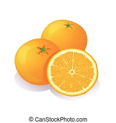 Juicy oranges on a white