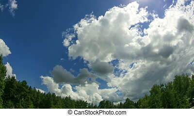Clouds In The Sky Moving Above The Trees. Above the tall...