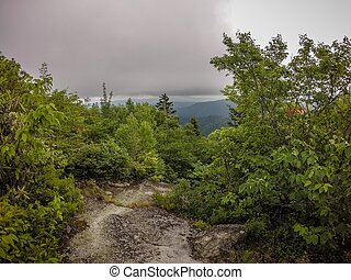 scenes along appalachian trail in smoky mountains north...