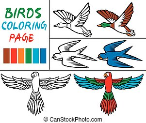 coloring book with birds