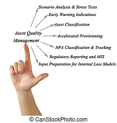 Asset Quality Management