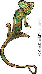 Chameleon. stylized multi coloured Chameleon. Hand Drawn...