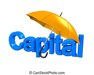 Capital - 3d image, investment conceptual, capital protected