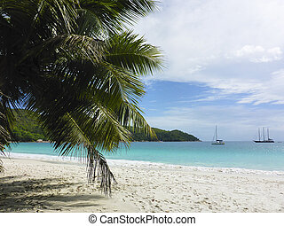 Tropical beach at Anse Lazio, Seychelles