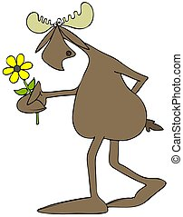 Moose with a daisy